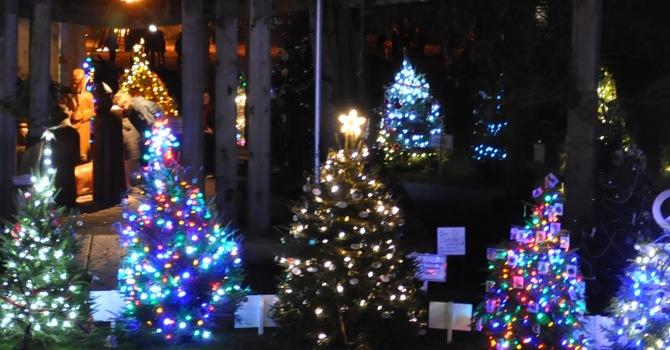 Dundarave Festival of Lights image