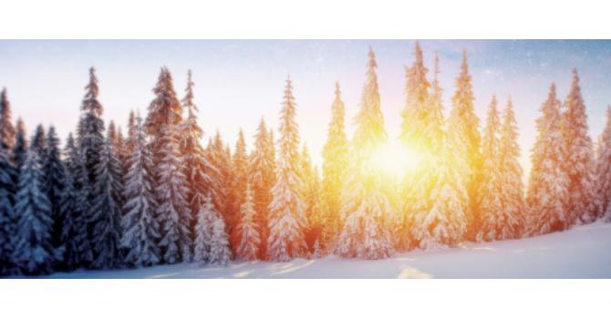 Share hope, faith, joy, & peace this season! image