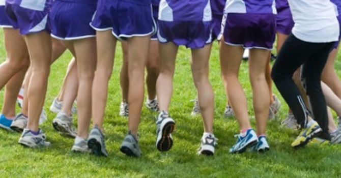 Cross Country Help Needed for Finals at Trout Lake image
