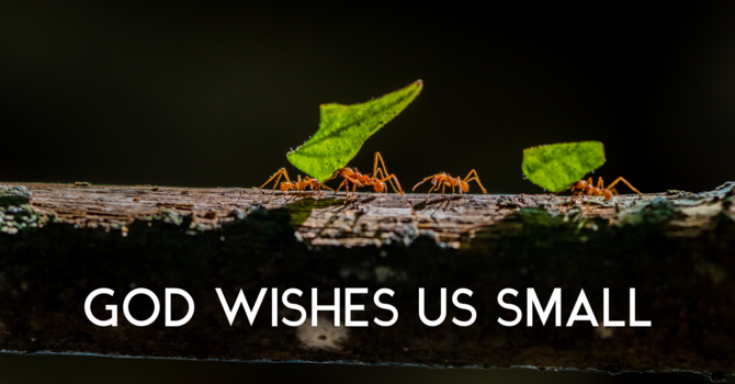 God Wishes Us Small image