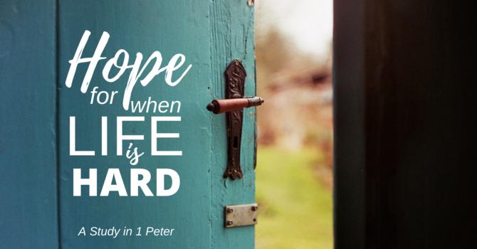 Hope Through Holiness