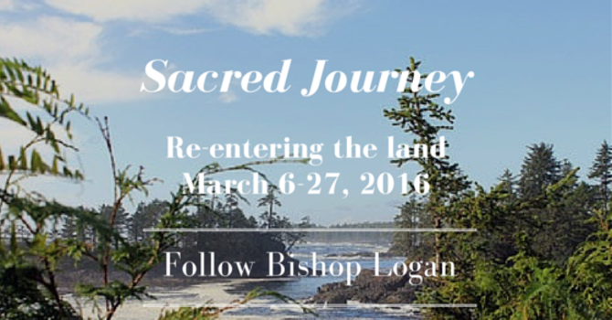 The Sacred Journey image