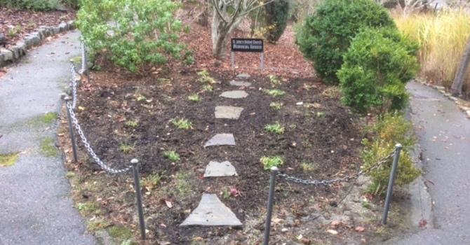 Garden Gnomes image