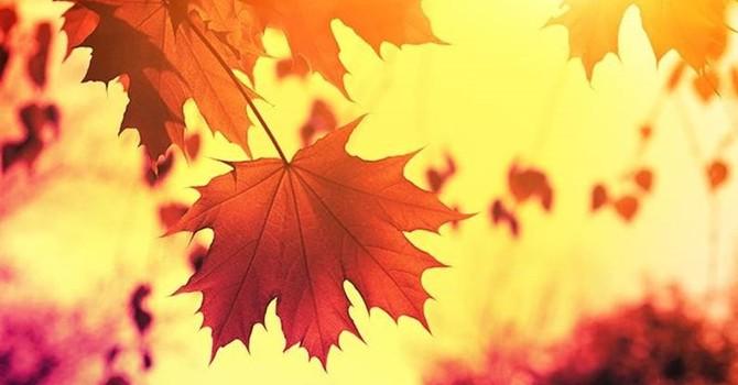 """Autumn Brings…Change"" (Part One)"