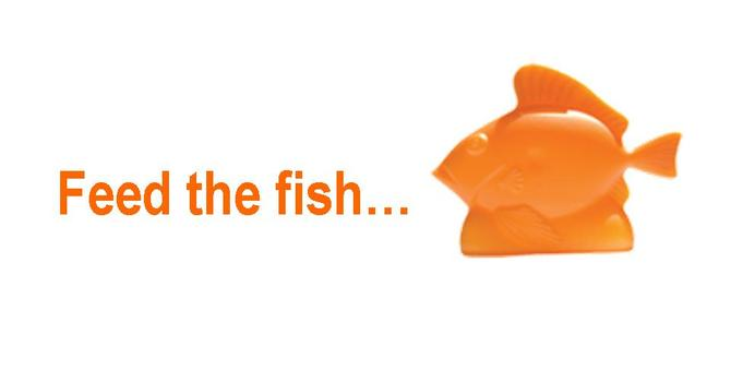 Feed the Fish image