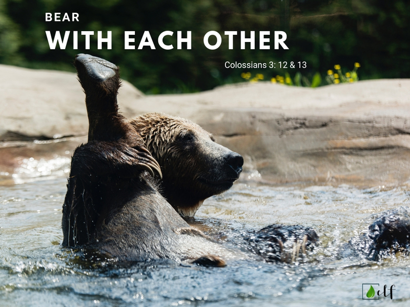 Bear With Each Other