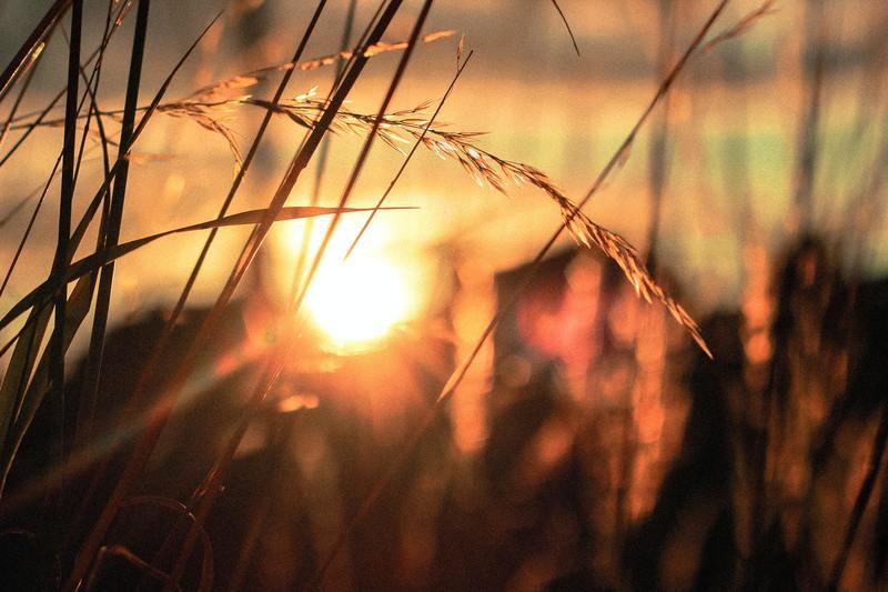 Hidden God, Finding Hope