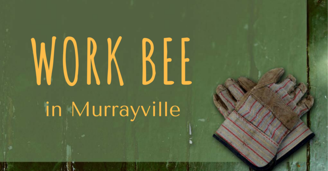 WORK BEE in Murrayville image