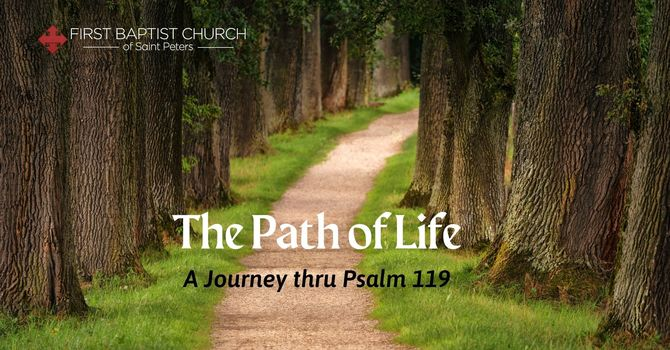A Path of Testimony