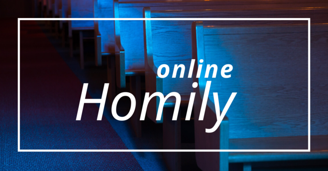 NEW! HOMILY NOW ONLINE
