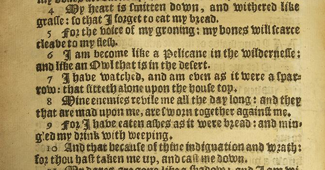Reflection on Psalm 102: 12-22  image