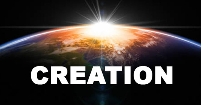 TAC Kids: God Created the World image