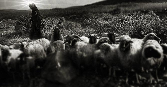 Why Shepherds at Bethlehem? image