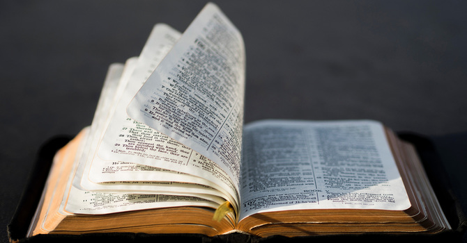 Scripture Harvest