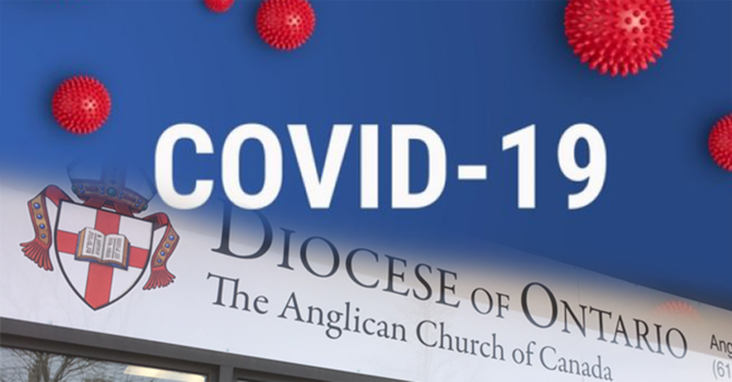 Further diocesan precautions to be taken over concerns around the spread of the COVID-19 virus image