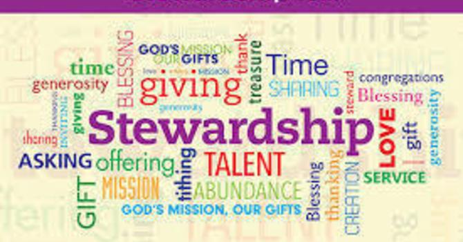 Stewardship 2021 - Terry Joyce image