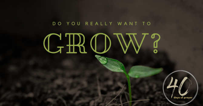 Do You Really Want To Grow?
