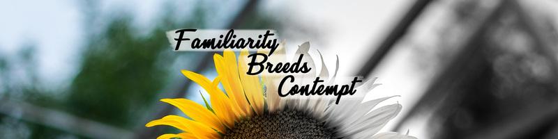 Familiarity Breeds Contempt