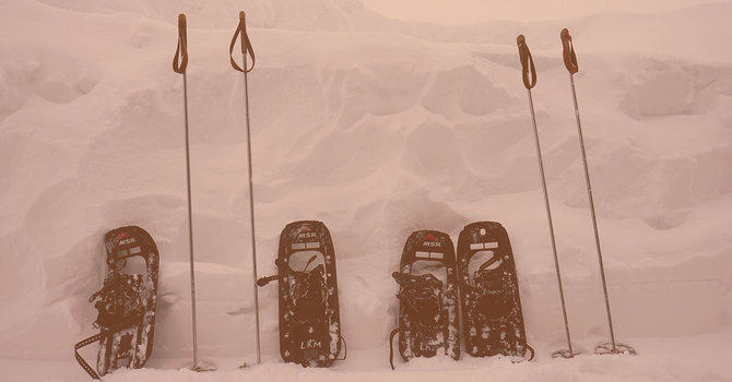 Young Adults Snowshoe Saturday