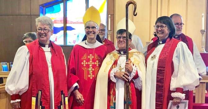 Photo of Bishops - Social Media Sensation