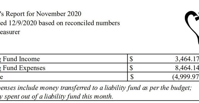 November 2020 Treasurer's Report image