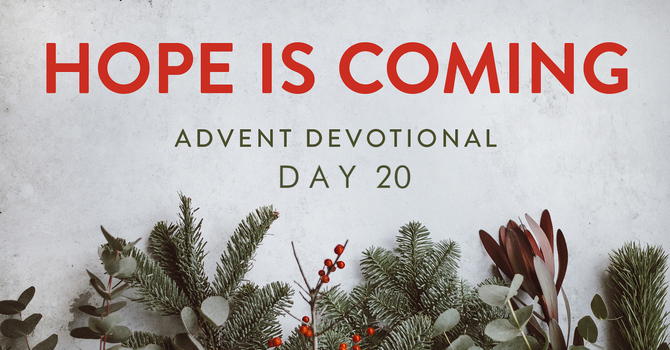 Day 20- Hope is Coming image