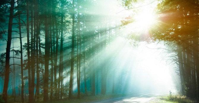 Lent 2: Salvation image