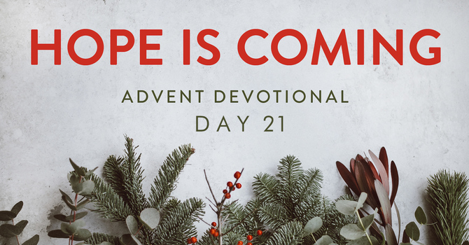 Day 21- Hope is Coming image