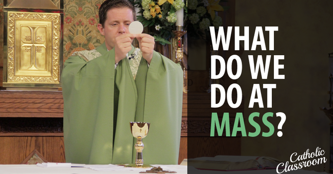 Why do we do what we do at Mass?  A video guide. image