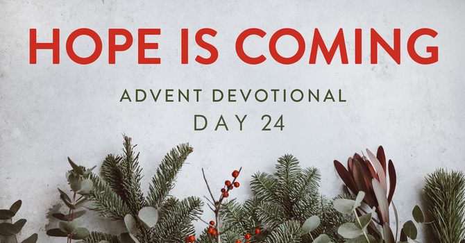 Day 24- Hope is Coming image