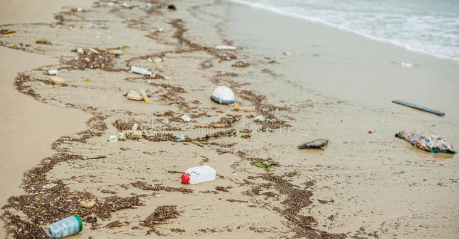 Great Canadian Shore Clean Up image
