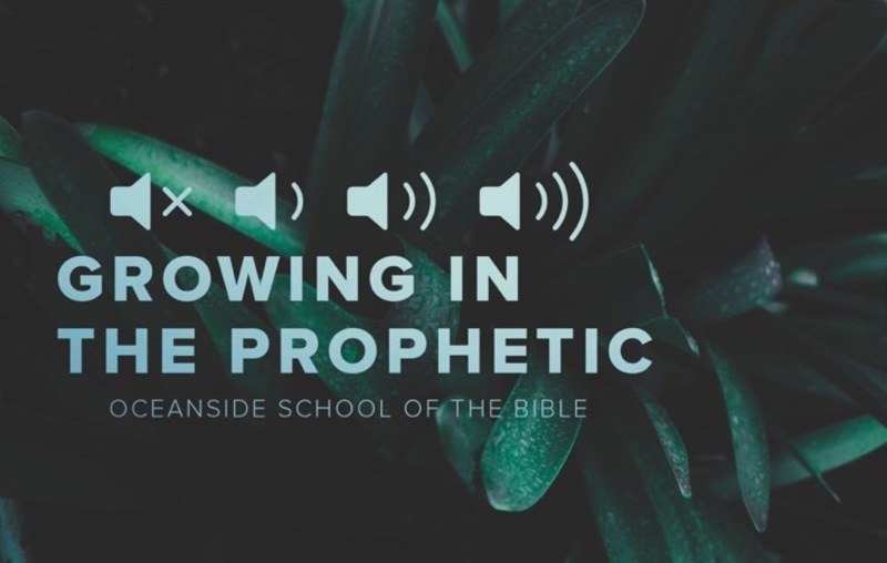 Session 003 - The Bedrock of Prophetic Ministry