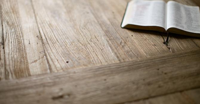 5th Sunday of Lent - John 12:20-33 image