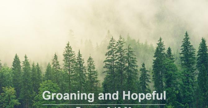 Groaning and Hopeful