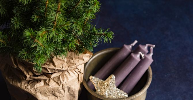 Advent/Christmas Newsletter image