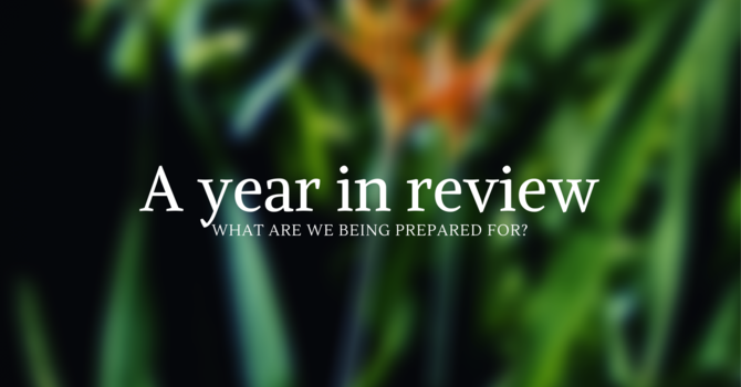 2019 in Review image