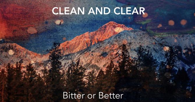 Bitter or Better