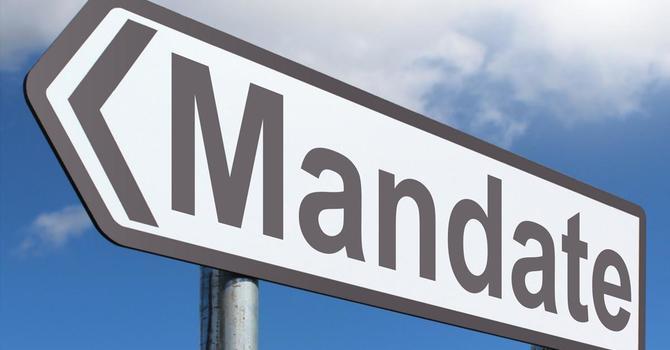 The Mandate  image