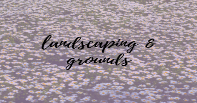 Landscaping & Grounds