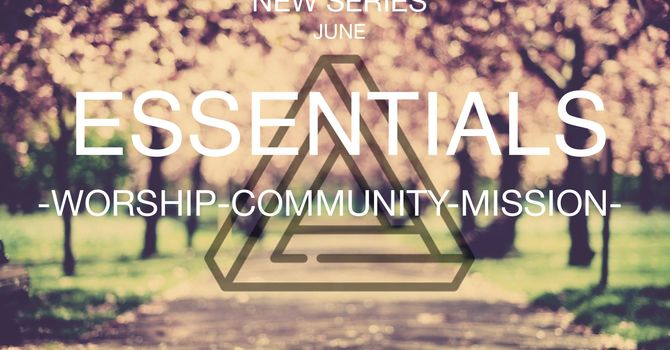 Essentials: Commnunity