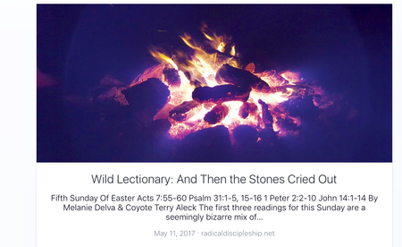 And Then the Stones Cried Out.  5th Sunday of Easter sermon