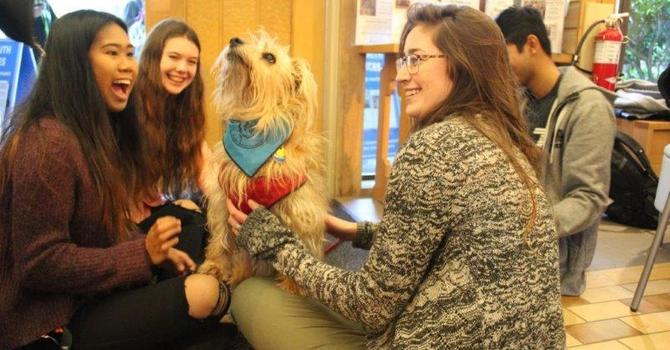 Pets and Peace: A Pet Cafe At UVic image