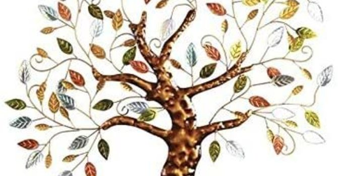 Visualize the Tree of Life