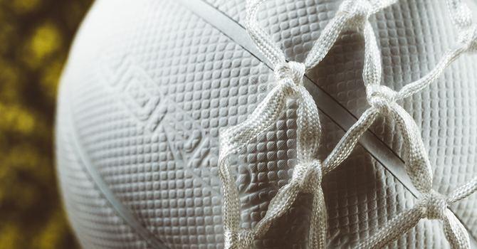 Gr. 6 Girls' Volleyball