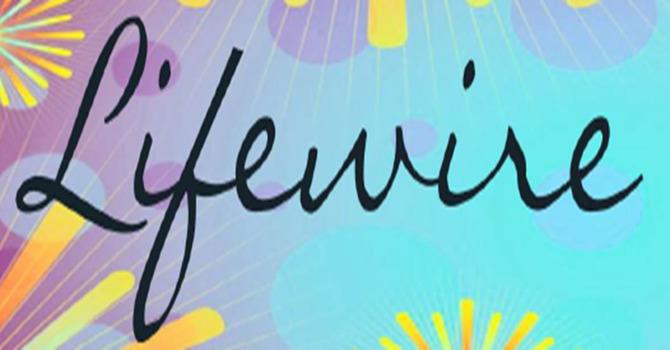 January 2021 Lifewire image