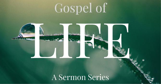 Gospel of Life Session #6