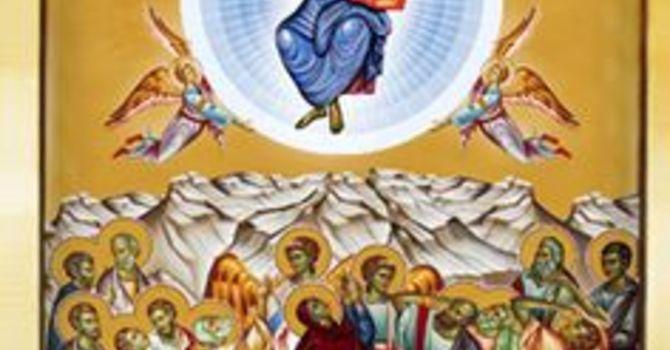 Why we Baptize image