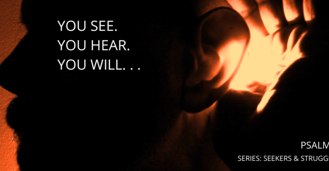 You See.  You Hear.  You Will ...