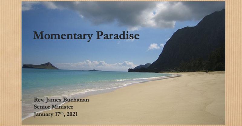 Momentary Paradise