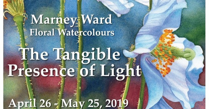 Marney Ward: Floral Watercolours